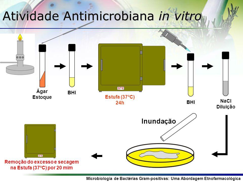 Microbiologia de Bactérias Gram-positivas: Uma Abordagem Etnofarmacológica Atividade Antimicrobiana in vitro Ágar Estoque BHI Estufa (37ºC) 24h NaCl D