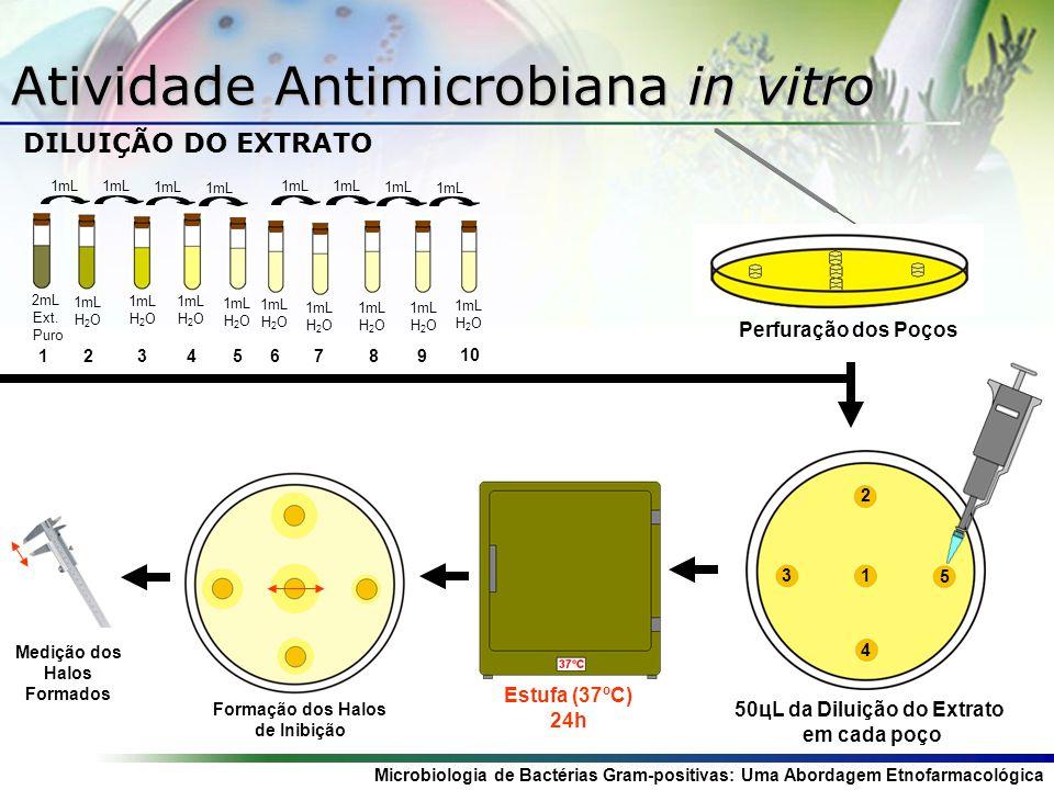Microbiologia de Bactérias Gram-positivas: Uma Abordagem Etnofarmacológica Níveis de Resistência Estufa (37ºC) 24h Ágar Estoque (...) 1 2 17 BHI (...) Estufa (37ºC) 24h Multialça Inoculação (...) Diluição NaCl Meio de Cultura 1mL H 2 O + 1mL Diluição HIA (18mL) Diluição Extrato (%) 10% 5% 0,019% 2mL Extrato (...) + + + Solidificação do meio em estufa a 37º C por 2 horas Diluição em Placa