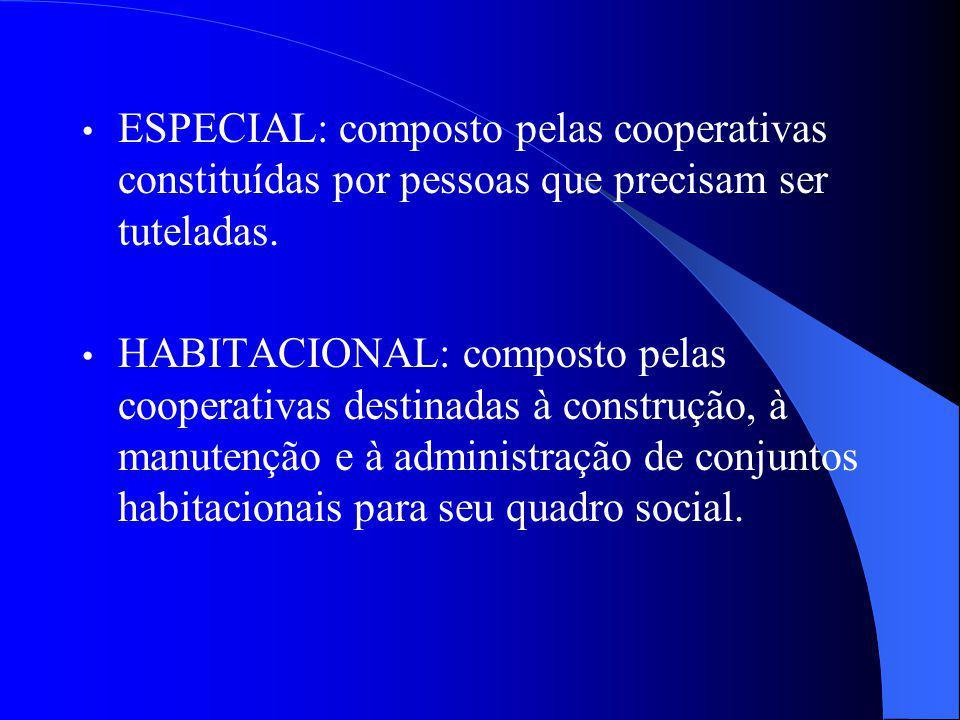 ESPECIAL: composto pelas cooperativas constituídas por pessoas que precisam ser tuteladas. HABITACIONAL: composto pelas cooperativas destinadas à cons