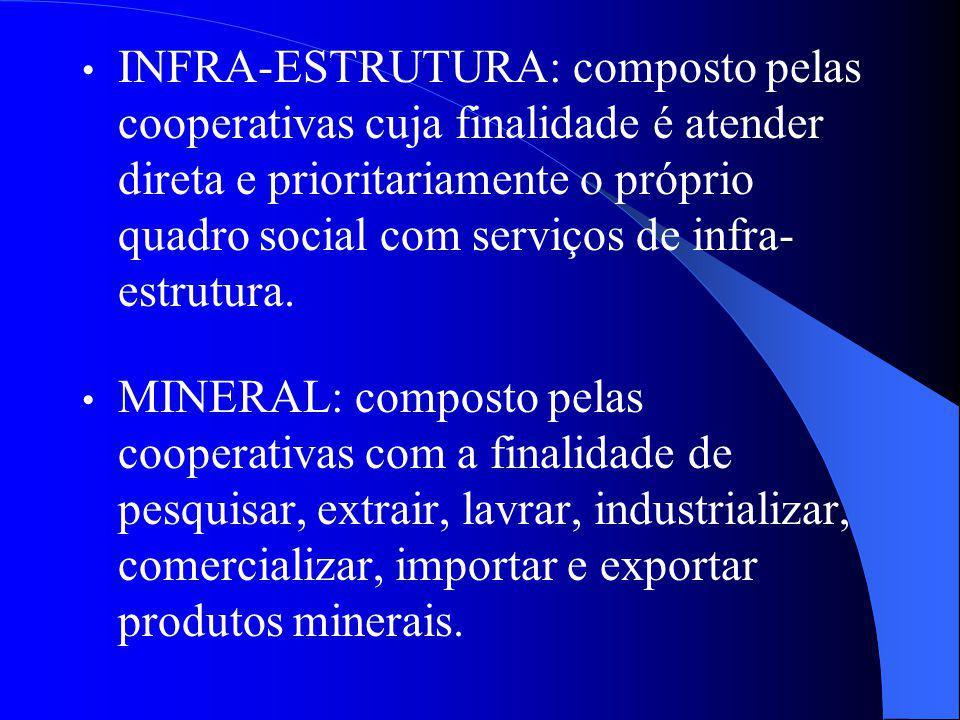 INFRA-ESTRUTURA: composto pelas cooperativas cuja finalidade é atender direta e prioritariamente o próprio quadro social com serviços de infra- estrut