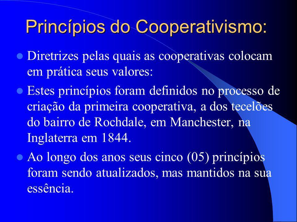 Princípios do Cooperativismo: Diretrizes pelas quais as cooperativas colocam em prática seus valores: Estes princípios foram definidos no processo de