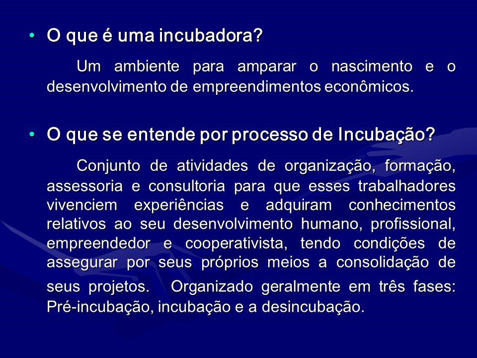 O que é uma incubadora?O que é uma incubadora? Um ambiente para amparar o nascimento e o desenvolvimento de empreendimentos econômicos. Um ambiente pa