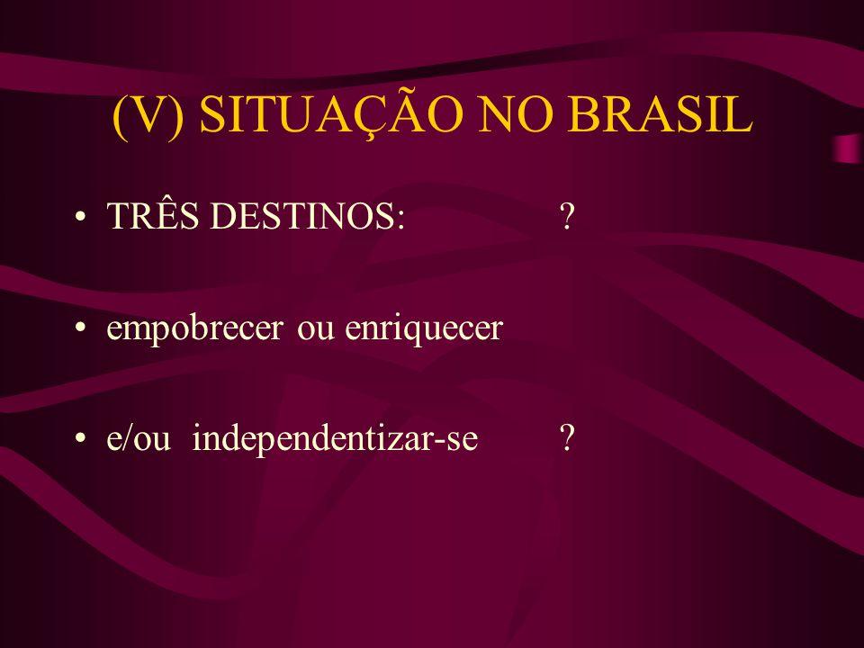 (V) SITUAÇÃO NO BRASIL TRÊS DESTINOS: ? empobrecer ou enriquecer e/ou independentizar-se ?