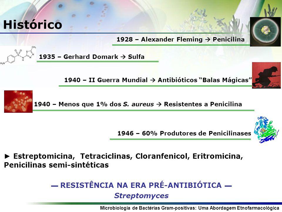 Microbiologia de Bactérias Gram-positivas: Uma Abordagem Etnofarmacológica Histórico 1928 – Alexander Fleming Penicilina 1940 – Menos que 1% dos S.