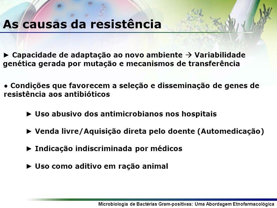 Microbiologia de Bactérias Gram-positivas: Uma Abordagem Etnofarmacológica As causas da resistência Capacidade de adaptação ao novo ambiente Variabilidade genética gerada por mutação e mecanismos de transferência Condições que favorecem a seleção e disseminação de genes de resistência aos antibióticos Uso abusivo dos antimicrobianos nos hospitais Venda livre/Aquisição direta pelo doente (Automedicação) Indicação indiscriminada por médicos Uso como aditivo em ração animal