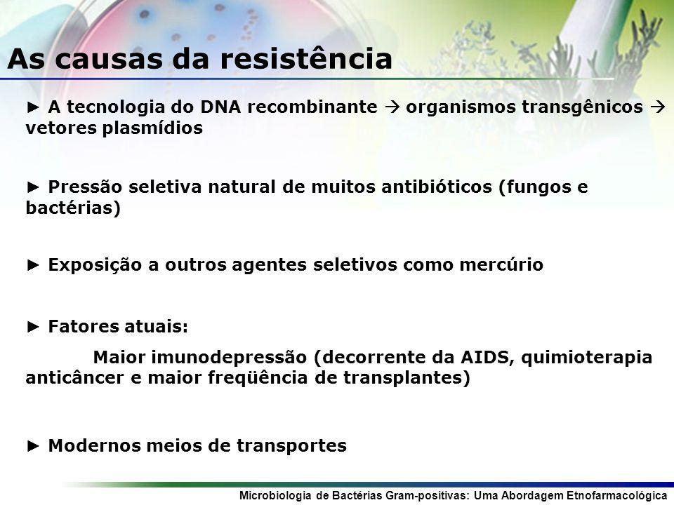 Microbiologia de Bactérias Gram-positivas: Uma Abordagem Etnofarmacológica Exposição a outros agentes seletivos como mercúrio As causas da resistência Fatores atuais: Maior imunodepressão (decorrente da AIDS, quimioterapia anticâncer e maior freqüência de transplantes) Modernos meios de transportes A tecnologia do DNA recombinante organismos transgênicos vetores plasmídios Pressão seletiva natural de muitos antibióticos (fungos e bactérias)