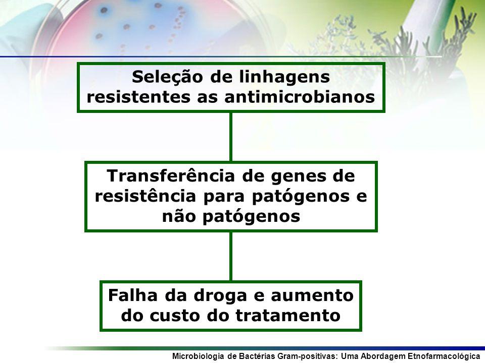 Microbiologia de Bactérias Gram-positivas: Uma Abordagem Etnofarmacológica Seleção de linhagens resistentes as antimicrobianos Transferência de genes de resistência para patógenos e não patógenos Falha da droga e aumento do custo do tratamento