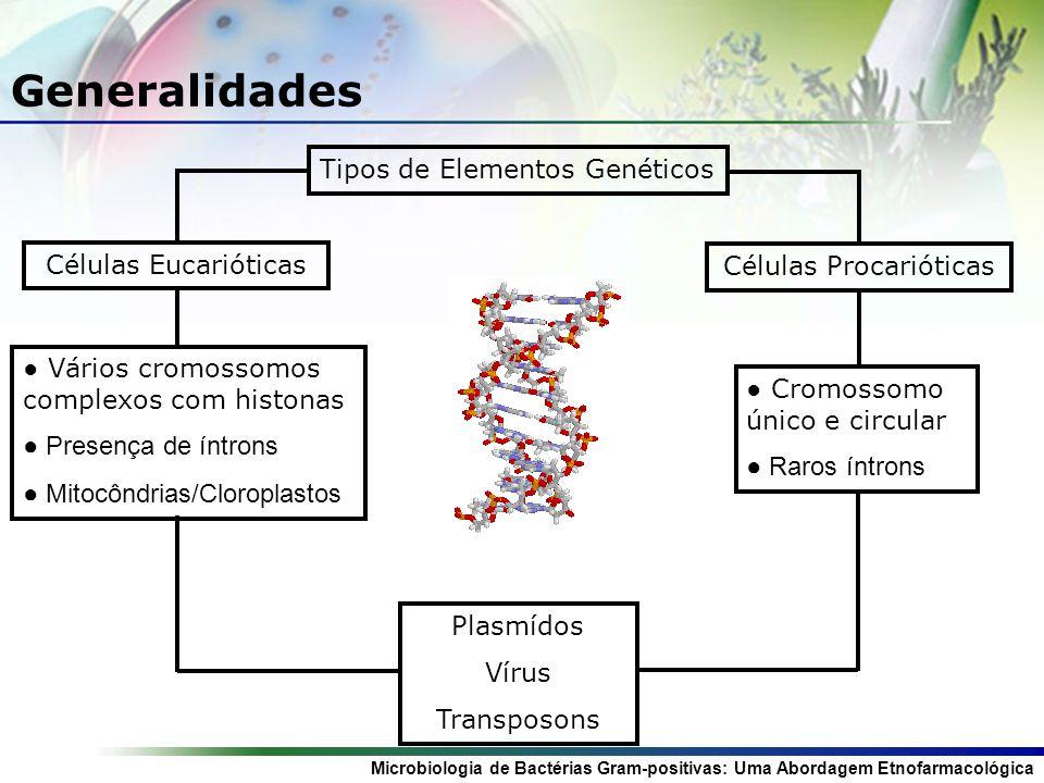 Microbiologia de Bactérias Gram-positivas: Uma Abordagem Etnofarmacológica Generalidades Tipos de Elementos Genéticos Células Eucarióticas Vários cromossomos complexos com histonas Presença de íntrons Mitocôndrias/Cloroplastos Células Procarióticas Cromossomo único e circular Raros íntrons Plasmídos Vírus Transposons