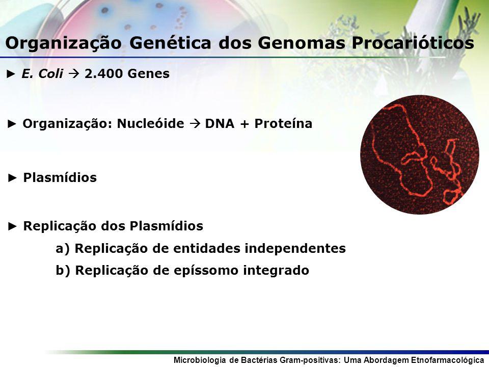 Microbiologia de Bactérias Gram-positivas: Uma Abordagem Etnofarmacológica Organização Genética dos Genomas Procarióticos E.