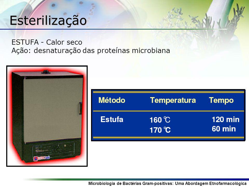 Microbiologia de Bactérias Gram-positivas: Uma Abordagem Etnofarmacológica ESTUFA - Calor seco Ação: desnaturação das proteínas microbiana Esterilizaç