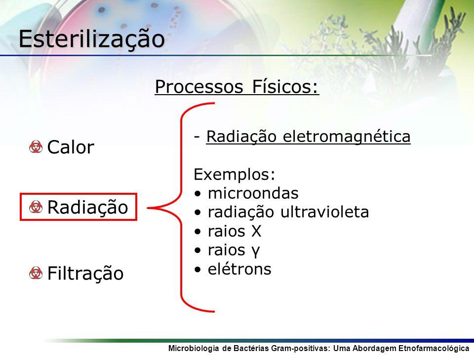 Microbiologia de Bactérias Gram-positivas: Uma Abordagem Etnofarmacológica Esterilização Calor Radiação Filtração - Radiação eletromagnética Exemplos: microondas radiação ultravioleta raios X raios γ elétrons Processos Físicos: