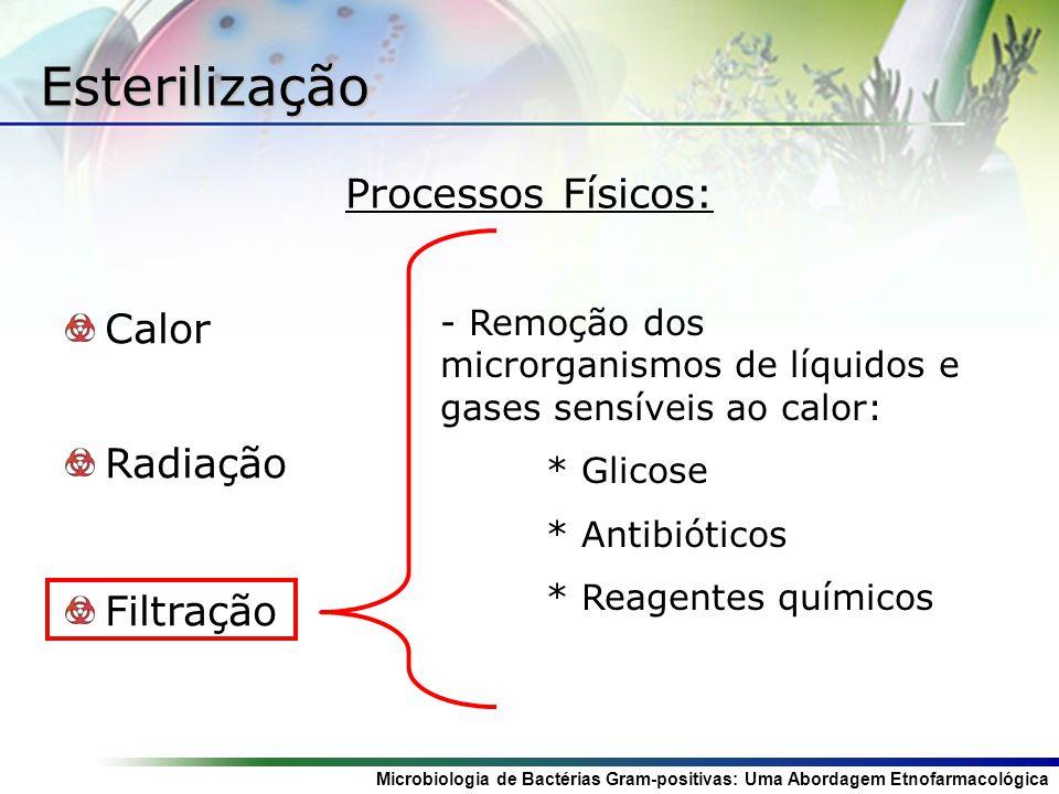 Microbiologia de Bactérias Gram-positivas: Uma Abordagem Etnofarmacológica Esterilização Calor Radiação Filtração - - Remoção dos microrganismos de líquidos e gases sensíveis ao calor: * Glicose * Antibióticos * Reagentes químicos Processos Físicos: