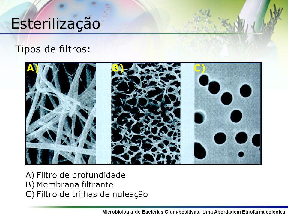 Microbiologia de Bactérias Gram-positivas: Uma Abordagem Etnofarmacológica Esterilização Tipos de filtros: A) A)Filtro de profundidade B) B)Membrana filtrante C) C)Filtro de trilhas de nuleação A) B) C)