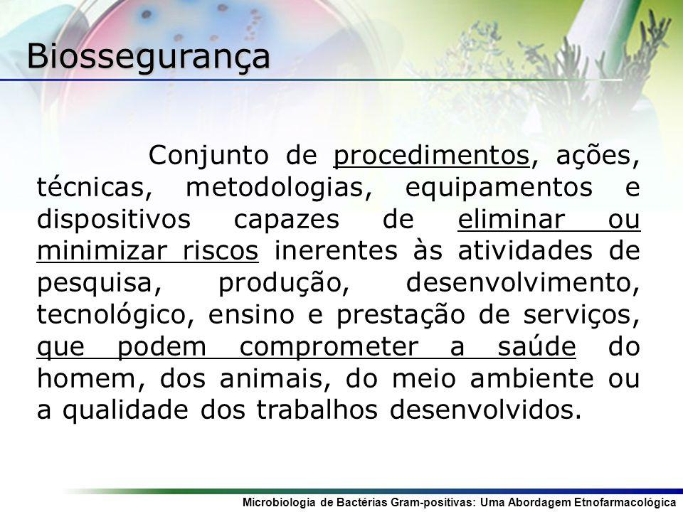 Microbiologia de Bactérias Gram-positivas: Uma Abordagem Etnofarmacológica Classificação dos Microorganismos Classe 2: Risco individual moderado e baixo risco para a comunidade.
