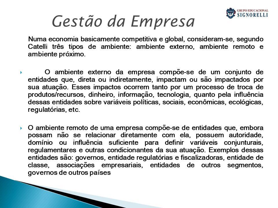 Numa economia basicamente competitiva e global, consideram-se, segundo Catelli três tipos de ambiente: ambiente externo, ambiente remoto e ambiente próximo.