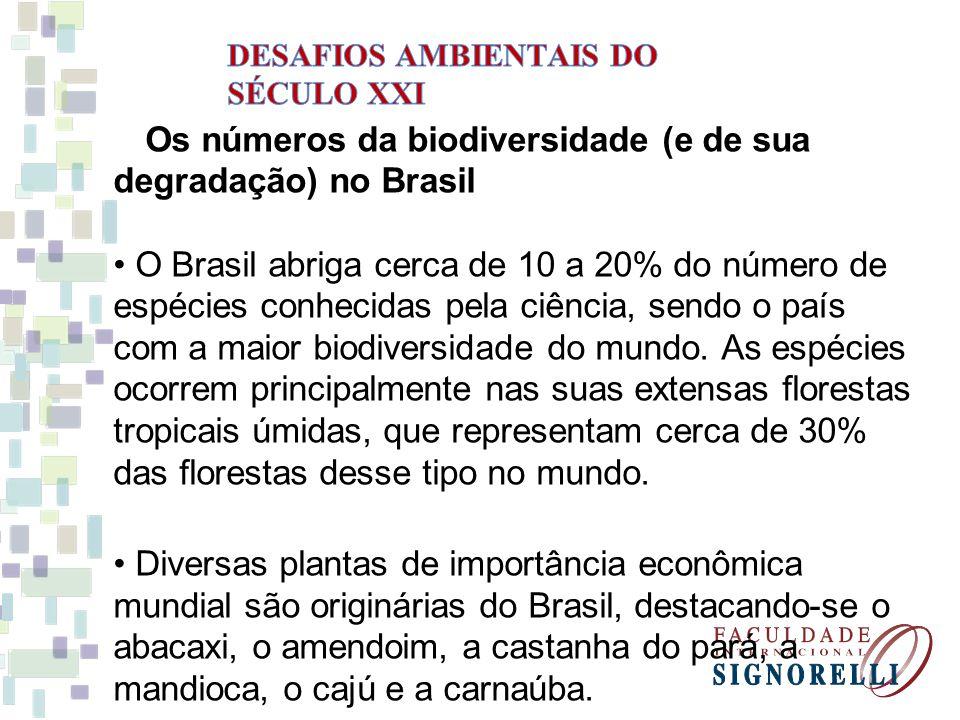 A Amazônia, a maior floresta tropical úmida do mundo, já perdeu uma área de 532 mil km2, o equivalente ao território da França.