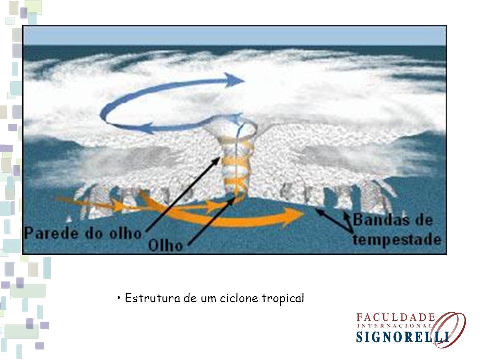 Estrutura de um ciclone tropical