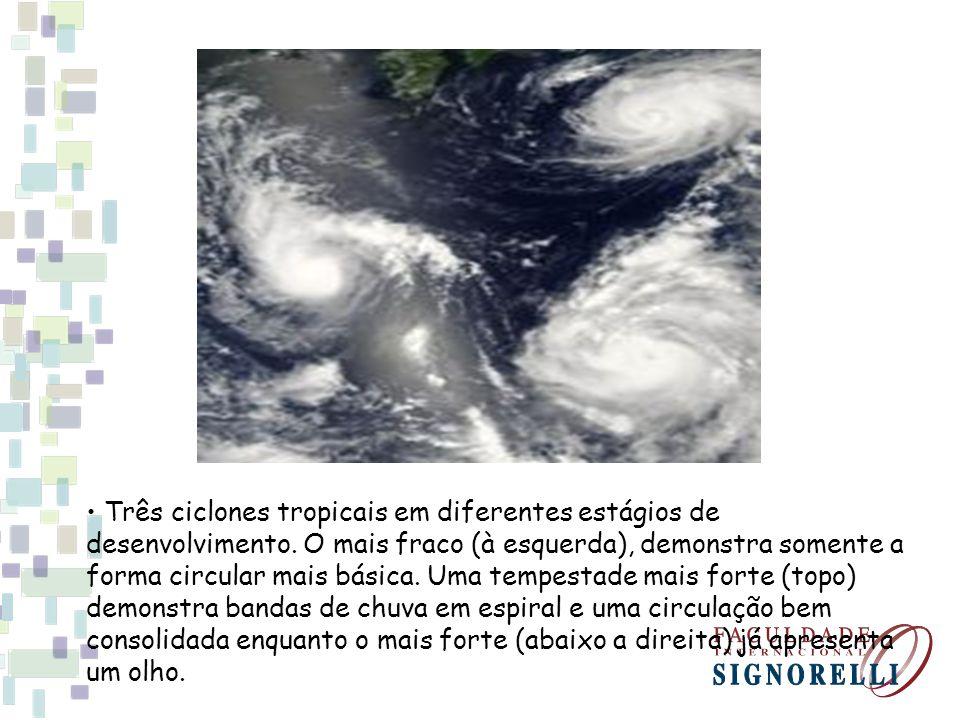 Três ciclones tropicais em diferentes estágios de desenvolvimento. O mais fraco (à esquerda), demonstra somente a forma circular mais básica. Uma temp
