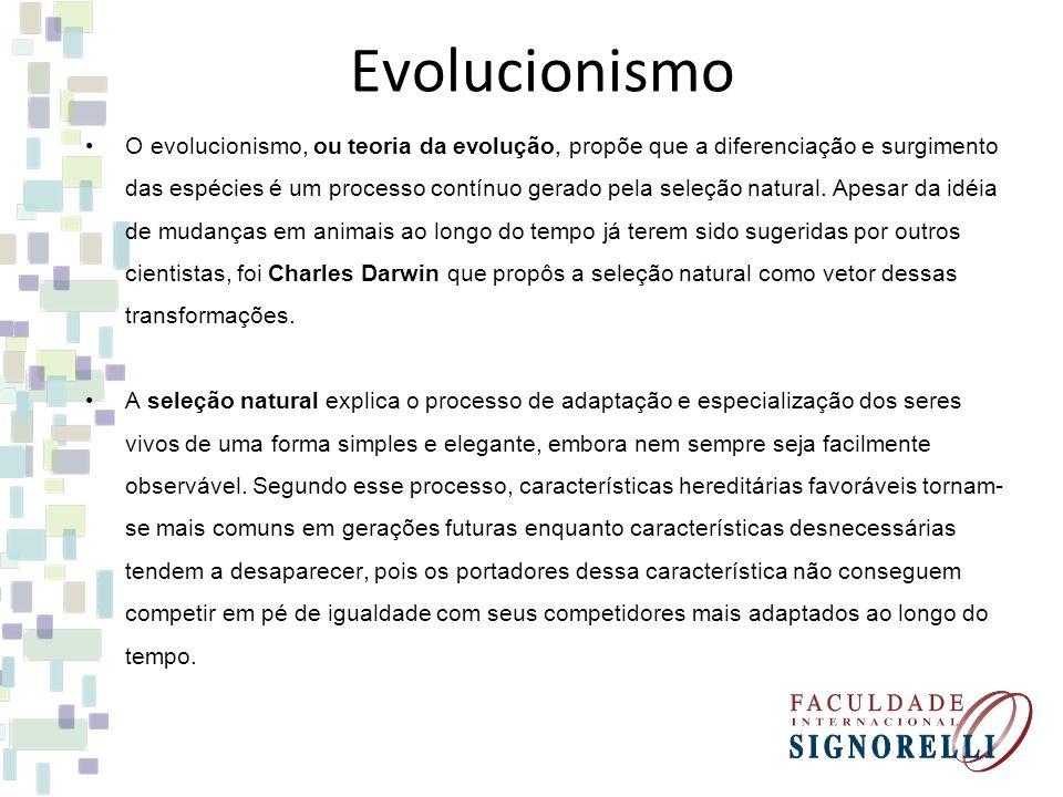 Evolucionismo O evolucionismo, ou teoria da evolução, propõe que a diferenciação e surgimento das espécies é um processo contínuo gerado pela seleção