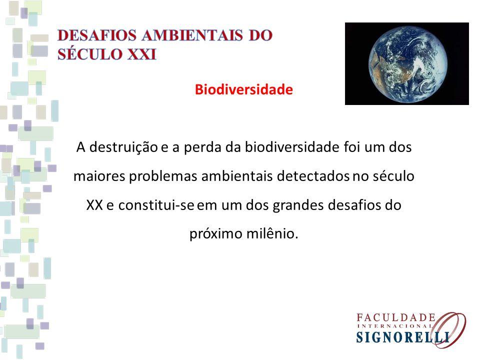 Biodiversidade A destruição e a perda da biodiversidade foi um dos maiores problemas ambientais detectados no século XX e constitui-se em um dos grandes desafios do próximo milênio.