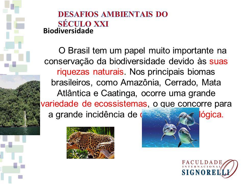 Biodiversidade O Brasil tem um papel muito importante na conservação da biodiversidade devido às suas riquezas naturais.
