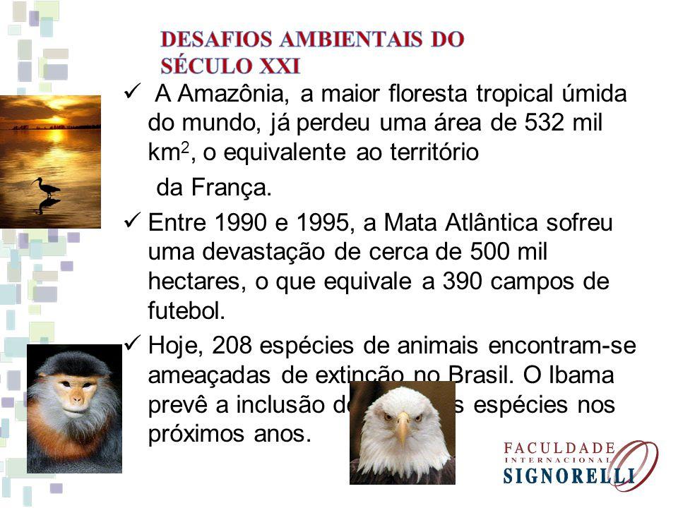 A Amazônia, a maior floresta tropical úmida do mundo, já perdeu uma área de 532 mil km 2, o equivalente ao território da França.