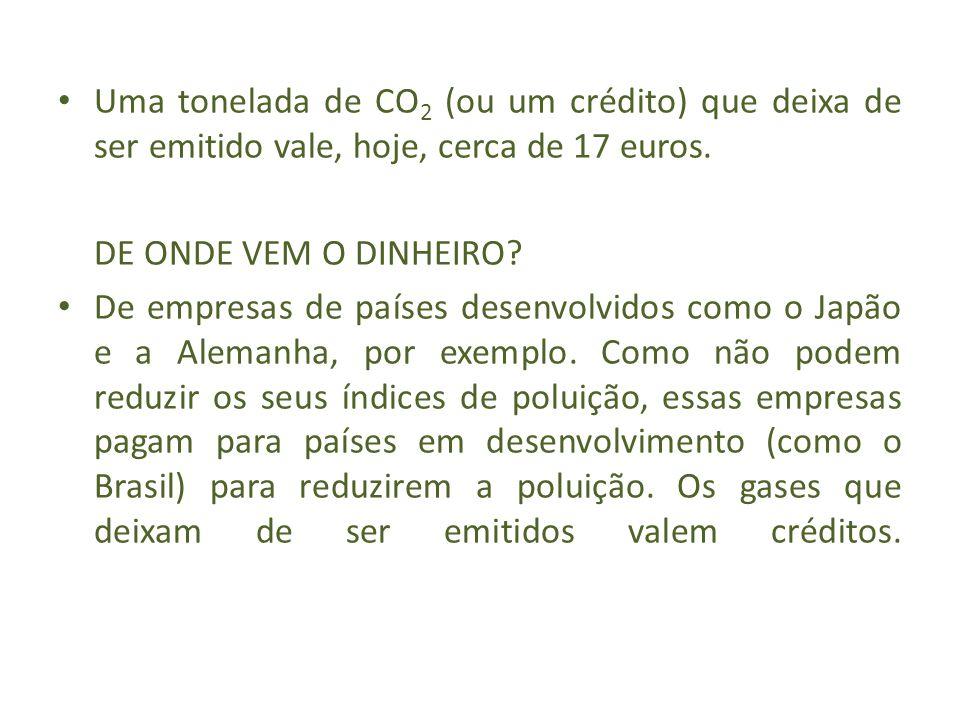 Uma tonelada de CO 2 (ou um crédito) que deixa de ser emitido vale, hoje, cerca de 17 euros. DE ONDE VEM O DINHEIRO? De empresas de países desenvolvid