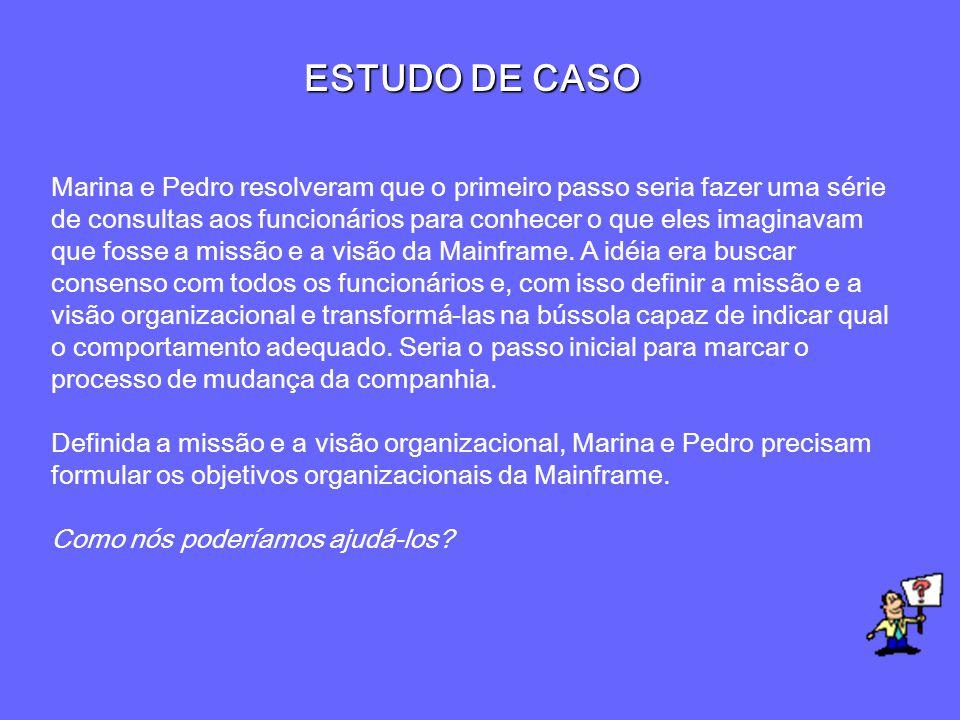 ESTUDO DE CASO Marina e Pedro resolveram que o primeiro passo seria fazer uma série de consultas aos funcionários para conhecer o que eles imaginavam