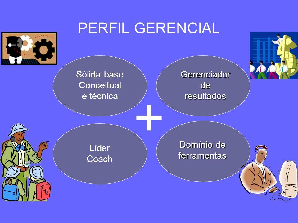 PERFIL GERENCIAL Sólida base Conceitual e técnica Gerenciador de resultados Líder Coach Domínio de ferramentas +