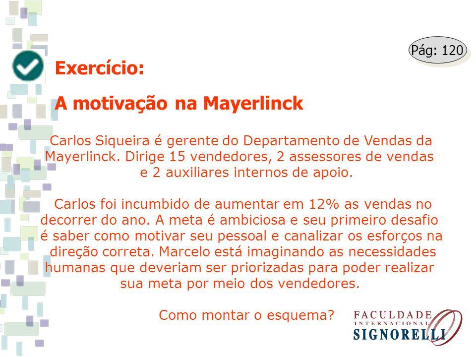 Exercício: A motivação na Mayerlinck Carlos Siqueira é gerente do Departamento de Vendas da Mayerlinck. Dirige 15 vendedores, 2 assessores de vendas e