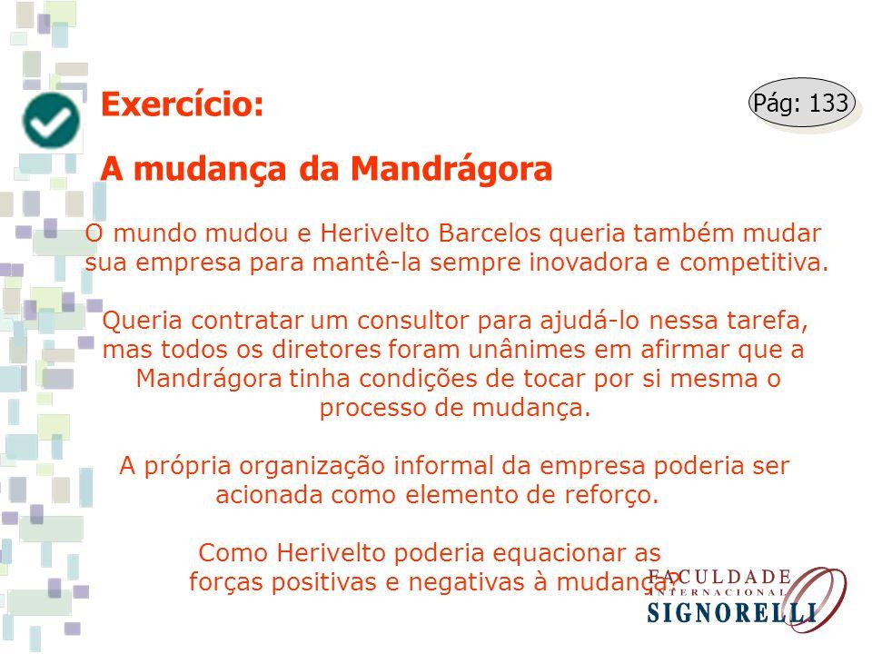 Exercício: A mudança da Mandrágora O mundo mudou e Herivelto Barcelos queria também mudar sua empresa para mantê-la sempre inovadora e competitiva. Qu