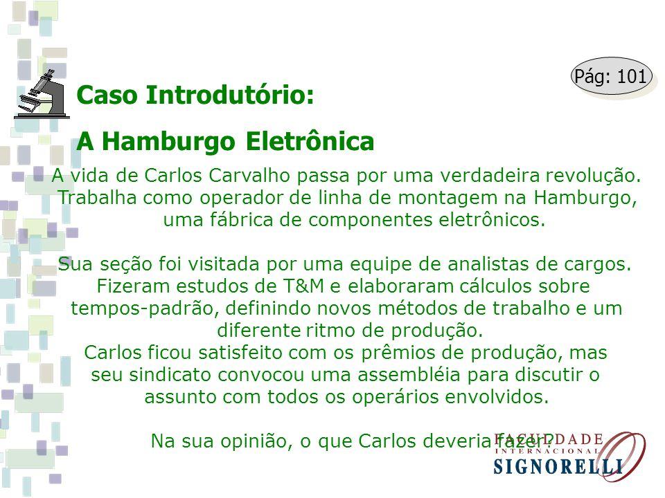Caso Introdutório: A Hamburgo Eletrônica A vida de Carlos Carvalho passa por uma verdadeira revolução. Trabalha como operador de linha de montagem na