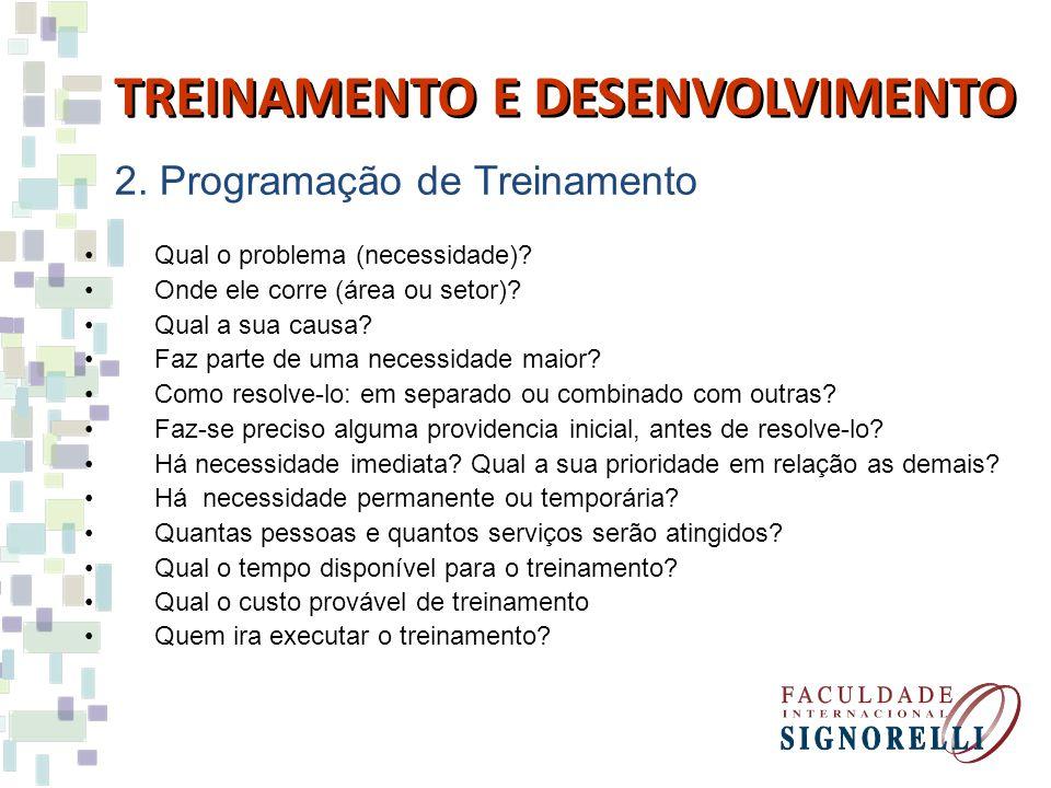 2.Programação de Treinamento Qual o problema (necessidade).