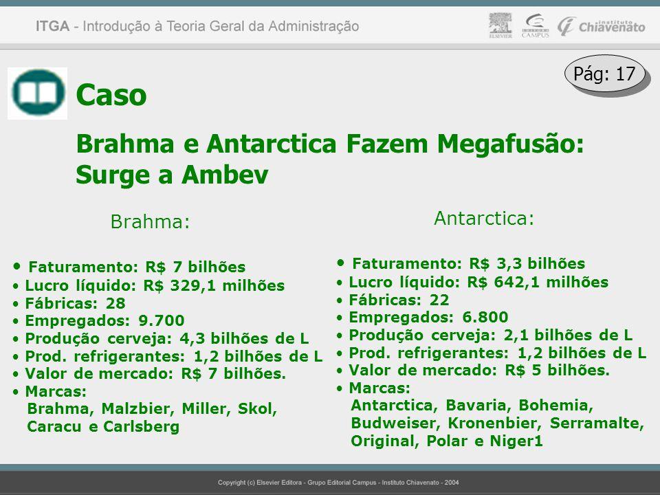 Caso Brahma e Antarctica Fazem Megafusão: Surge a Ambev Brahma: Faturamento: R$ 7 bilhões Lucro líquido: R$ 329,1 milhões Fábricas: 28 Empregados: 9.7
