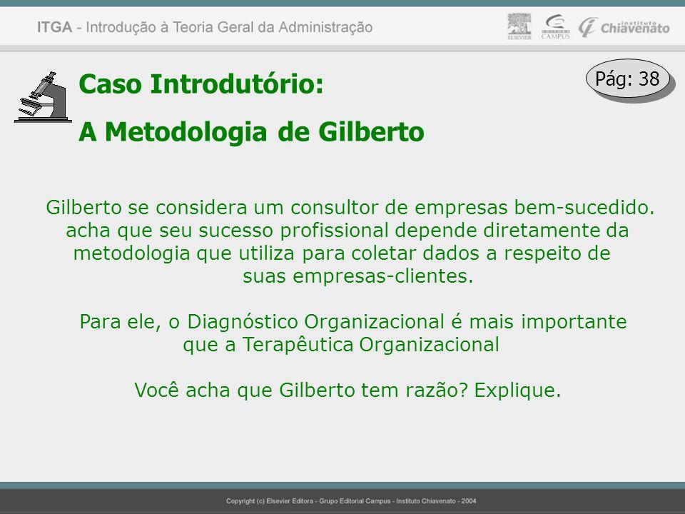 Caso Introdutório: A Metodologia de Gilberto Gilberto se considera um consultor de empresas bem-sucedido. acha que seu sucesso profissional depende di