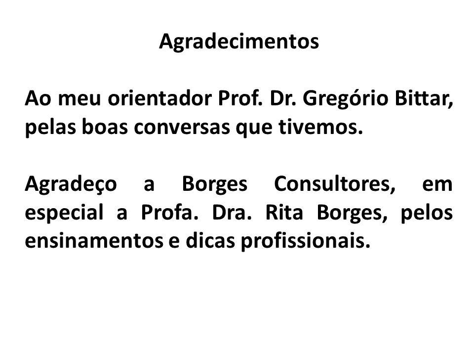 Agradecimentos Ao meu orientador Prof. Dr. Gregório Bittar, pelas boas conversas que tivemos. Agradeço a Borges Consultores, em especial a Profa. Dra.