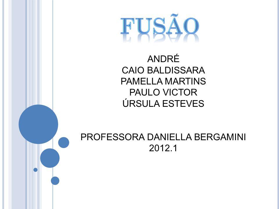 ANDRÉ CAIO BALDISSARA PAMELLA MARTINS PAULO VICTOR ÚRSULA ESTEVES PROFESSORA DANIELLA BERGAMINI 2012.1