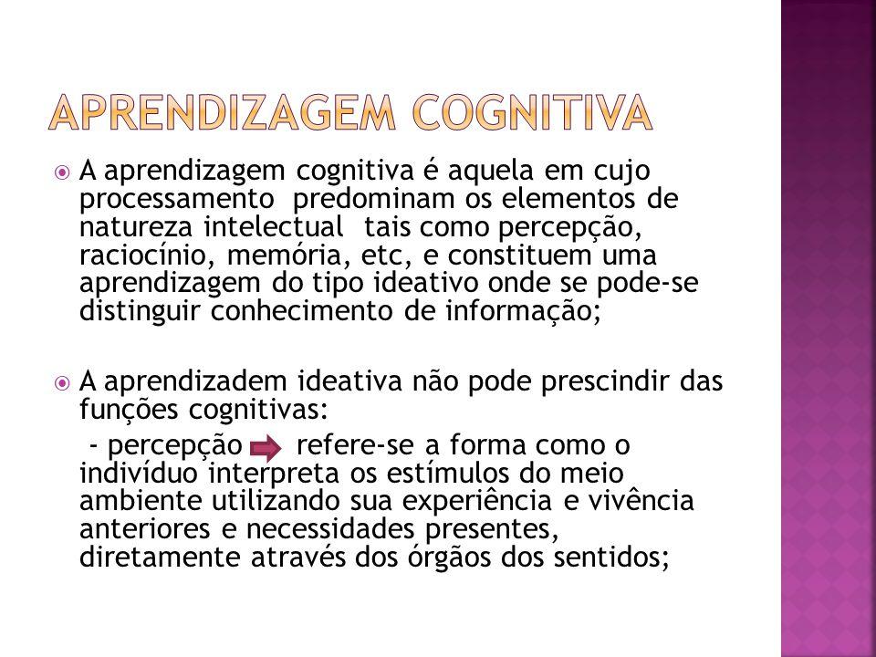 A aprendizagem cognitiva é aquela em cujo processamento predominam os elementos de natureza intelectual tais como percepção, raciocínio, memória, etc,
