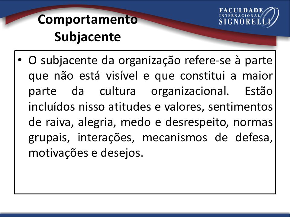 Comportamento Subjacente O subjacente da organização refere-se à parte que não está visível e que constitui a maior parte da cultura organizacional.