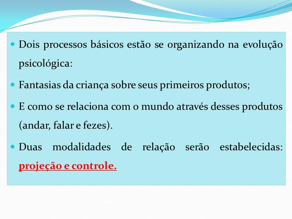 Dois processos básicos estão se organizando na evolução psicológica: Fantasias da criança sobre seus primeiros produtos; E como se relaciona com o mun