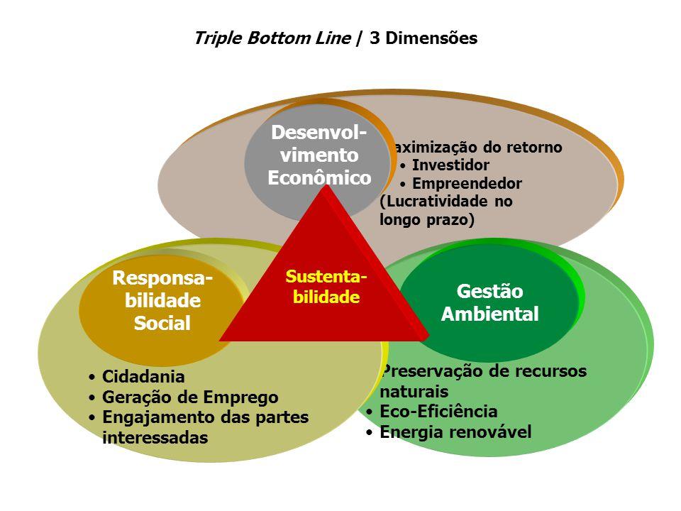Maximização do retorno Investidor Empreendedor (Lucratividade no longo prazo) Preservação de recursos naturais Eco-Eficiência Energia renovável Cidada