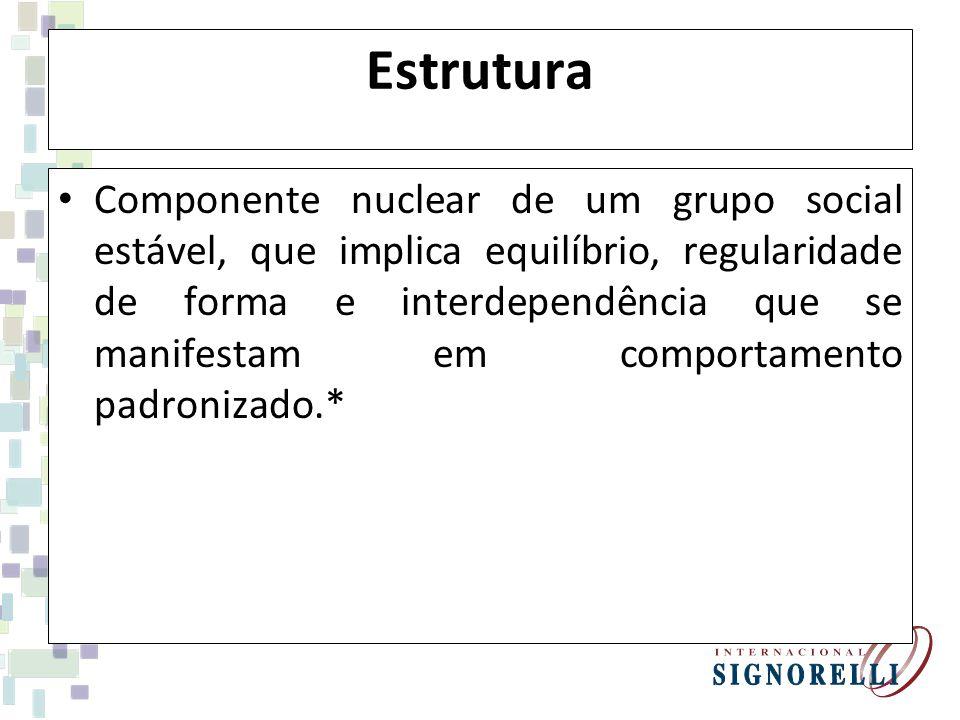 Estrutura Componente nuclear de um grupo social estável, que implica equilíbrio, regularidade de forma e interdependência que se manifestam em comportamento padronizado.*