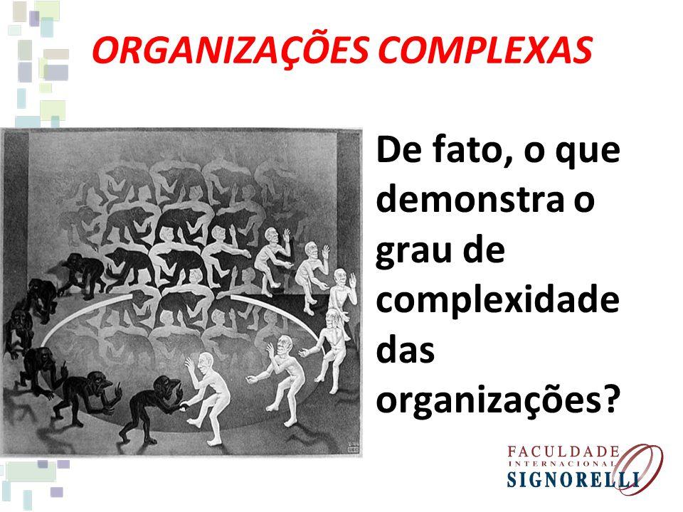 ORGANIZAÇÕES COMPLEXAS De fato, o que demonstra o grau de complexidade das organizações?