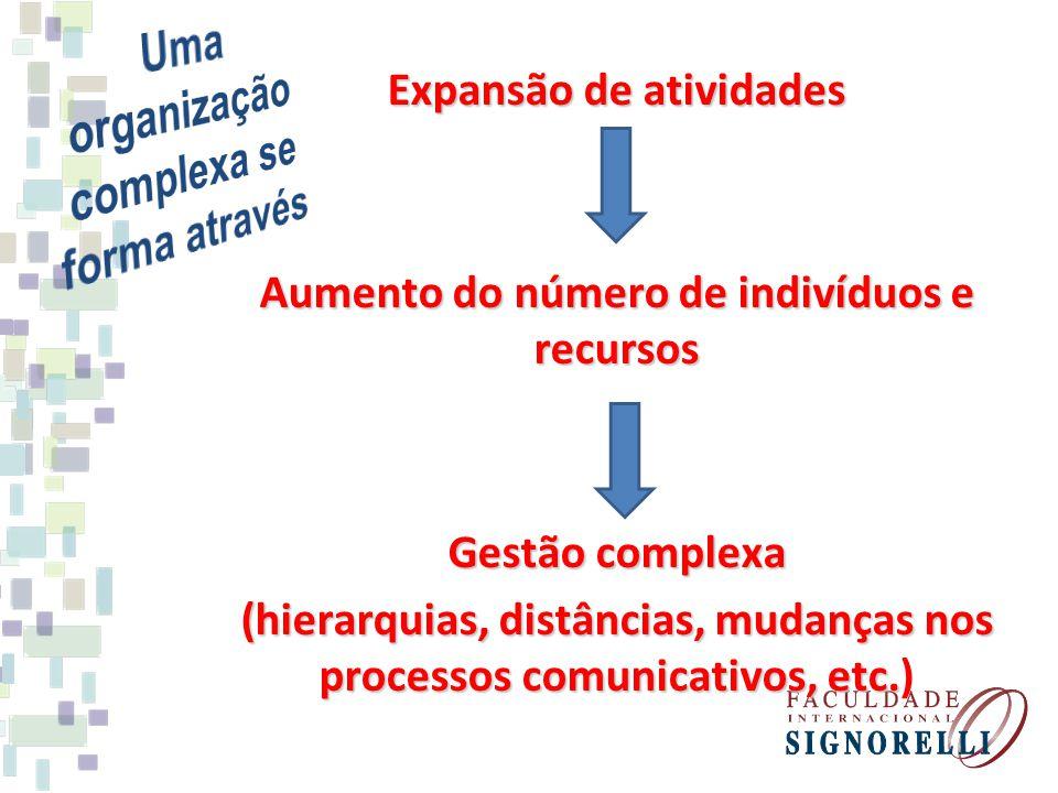 Expansão de atividades Aumento do número de indivíduos e recursos Gestão complexa (hierarquias, distâncias, mudanças nos processos comunicativos, etc.