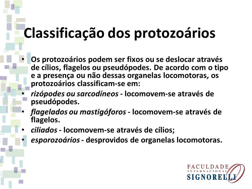 Classificação dos protozoários Os protozoários podem ser fixos ou se deslocar através de cílios, flagelos ou pseudópodes. De acordo com o tipo e a pre