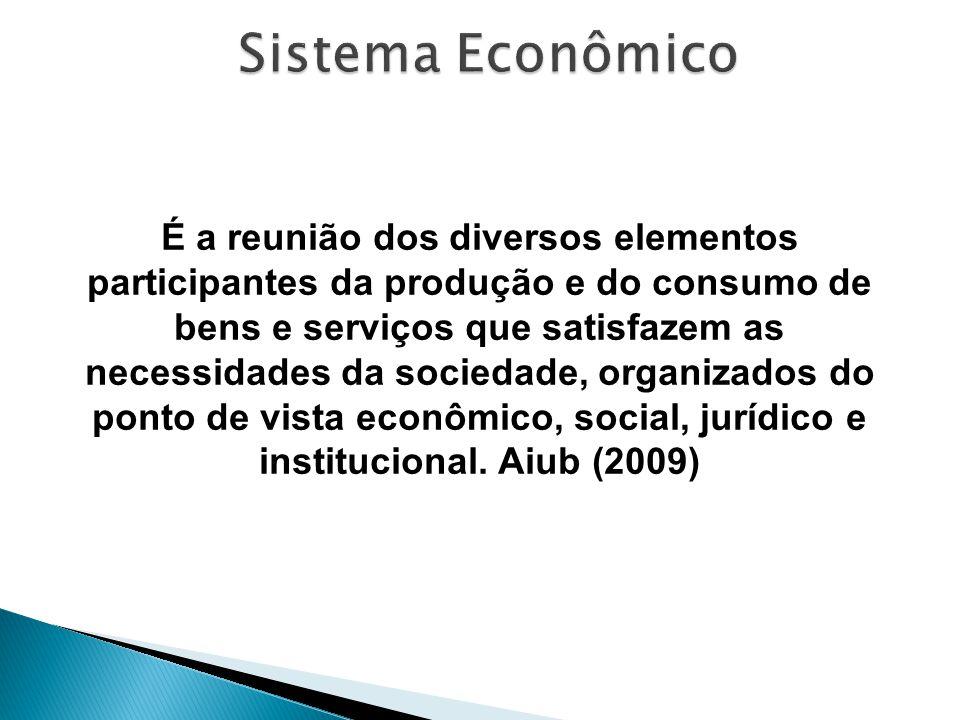 É a reunião dos diversos elementos participantes da produção e do consumo de bens e serviços que satisfazem as necessidades da sociedade, organizados