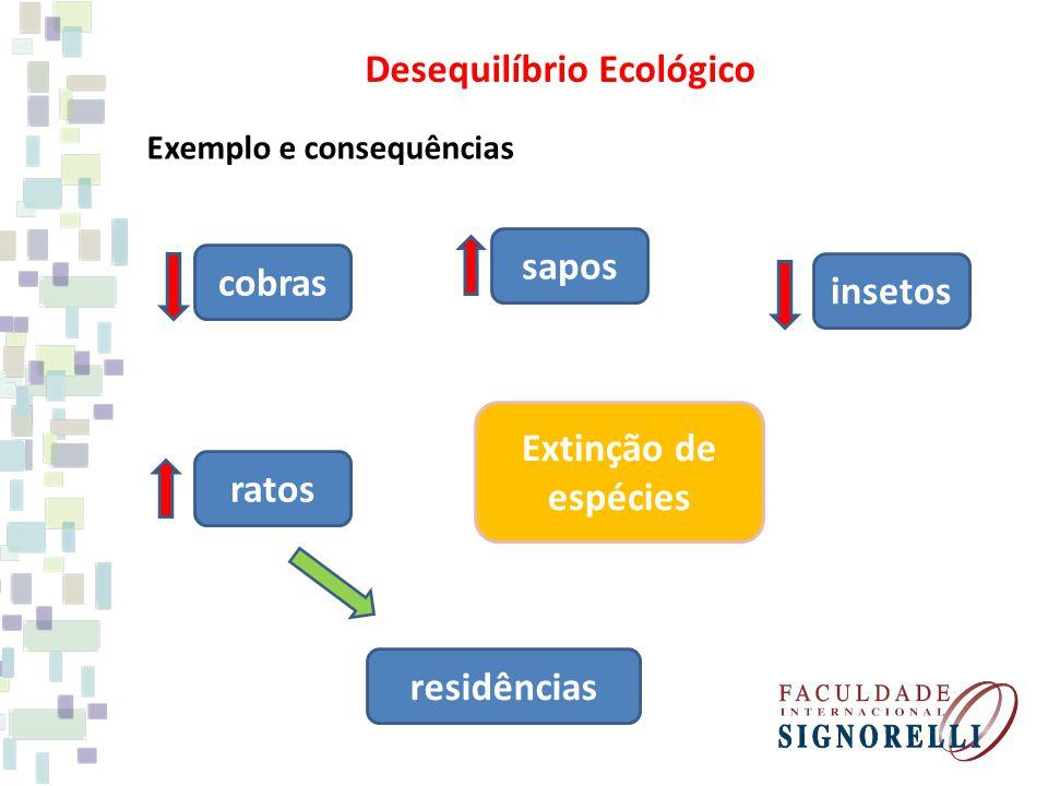 Exemplo e consequências cobras sapos insetos Extinção de espécies ratos residências