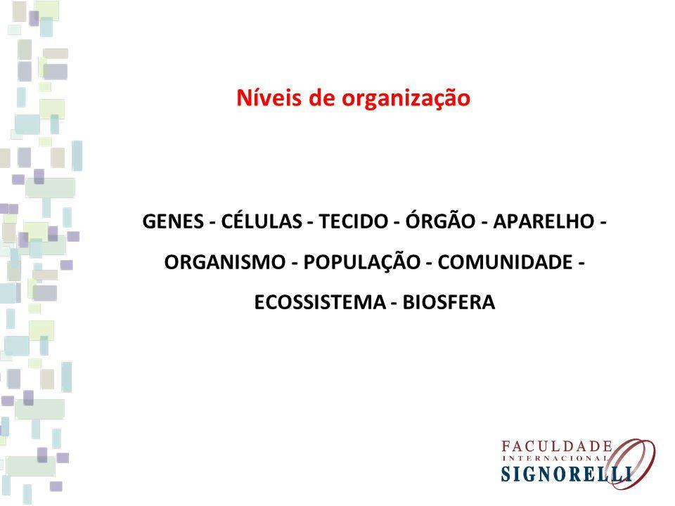 Níveis de organização GENES - CÉLULAS - TECIDO - ÓRGÃO - APARELHO - ORGANISMO - POPULAÇÃO - COMUNIDADE - ECOSSISTEMA - BIOSFERA