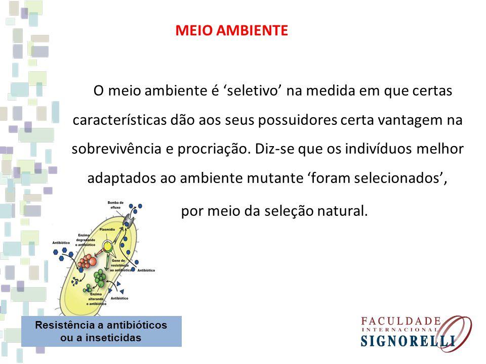 O meio ambiente é seletivo na medida em que certas características dão aos seus possuidores certa vantagem na sobrevivência e procriação. Diz-se que o