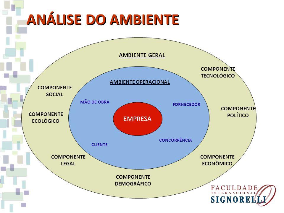 ANÁLISE DO AMBIENTE AMBIENTE GERAL AMBIENTE OPERACIONAL COMPONENTE ECONÔMICO COMPONENTE TECNOLÓGICO COMPONENTE LEGAL COMPONENTE SOCIAL FORNECEDOR CONCORRÊNCIA CLIENTE MÃO DE OBRA EMPRESA COMPONENTE POLÍTICO COMPONENTE DEMOGRÁFICO COMPONENTE ECOLÓGICO
